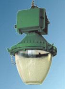 Общепромышленное оборудование : ЖСП-05В, ГСП-05В